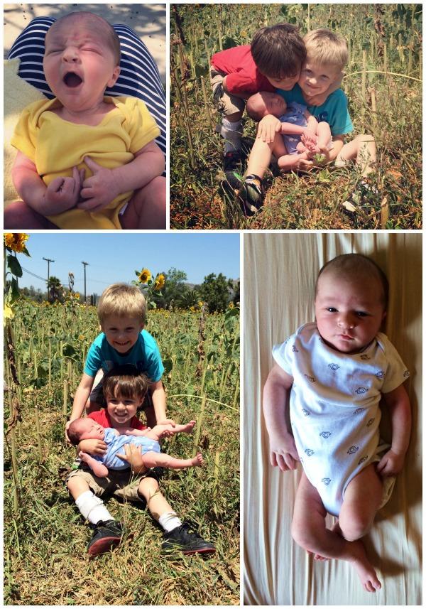 Owen collage 3
